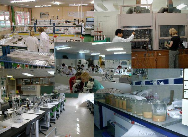 Оснащення клініко діагностичної лабораторії
